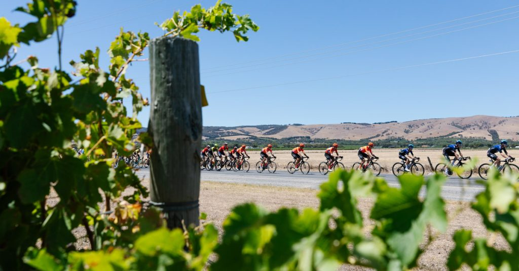 VIVA confirmed as official supplier for Tour Down Under Challenge Jerseys for 2020